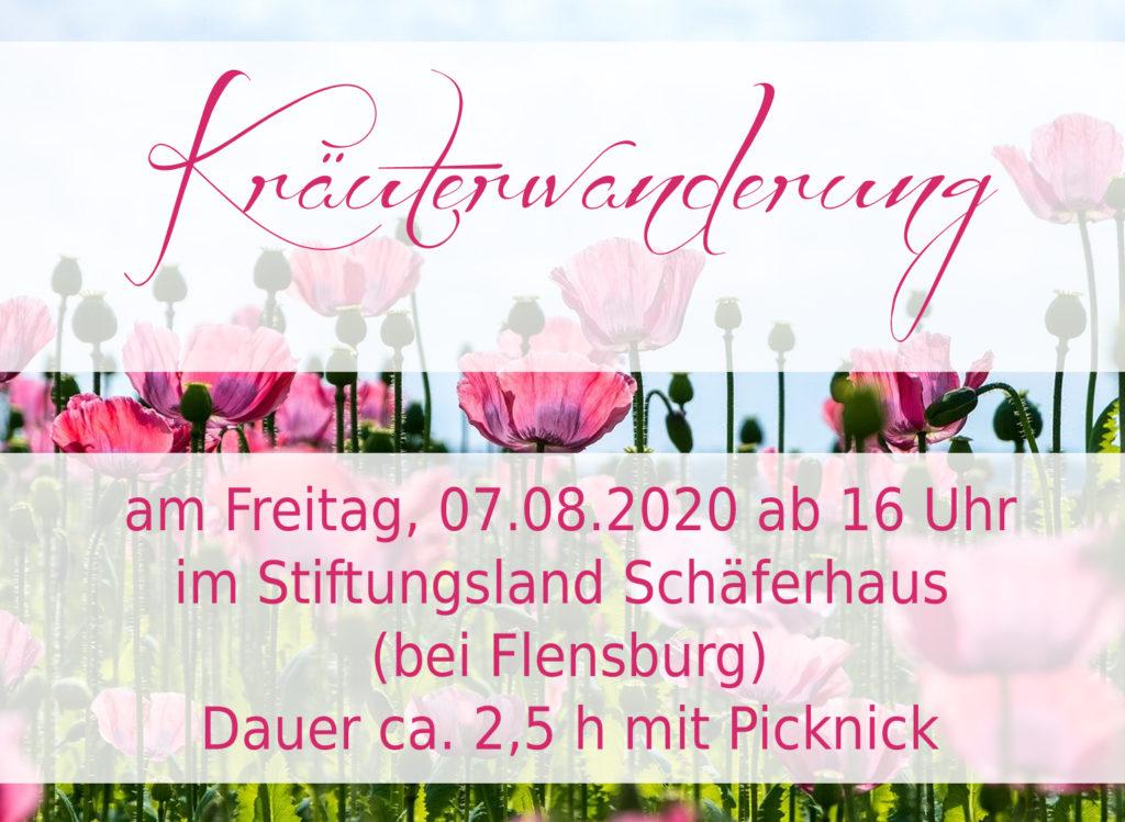 Kräuterwanderung, 07-08-20, Kräuterzauberin, Nicole Weimert